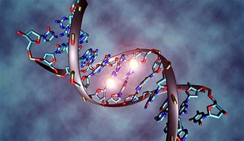 Épigénétique : nos gènes sous influence…